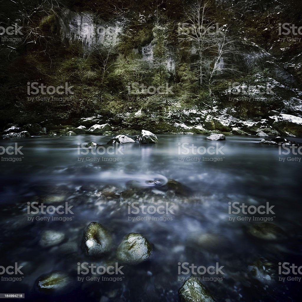 River in a forest royalty-free stock photo