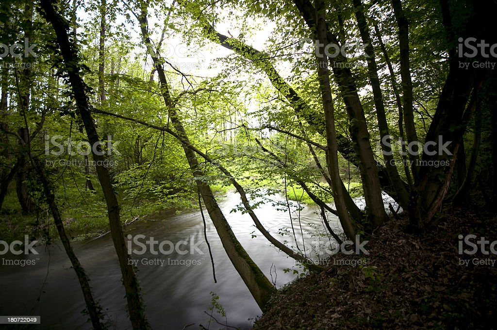 River in a Natural Park stock photo
