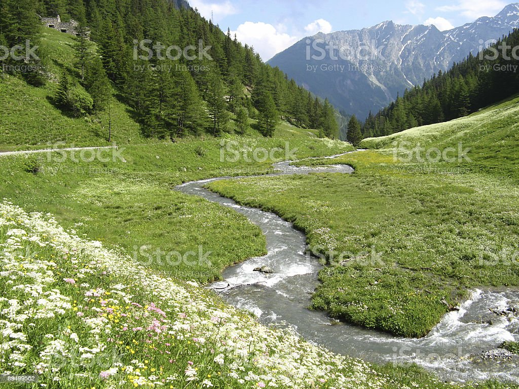 River in a valley of Italian alps royalty-free stock photo