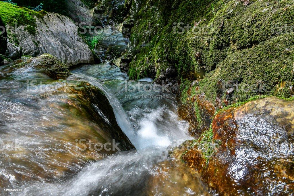 Rivière en Autriche - Photo de Arbre libre de droits