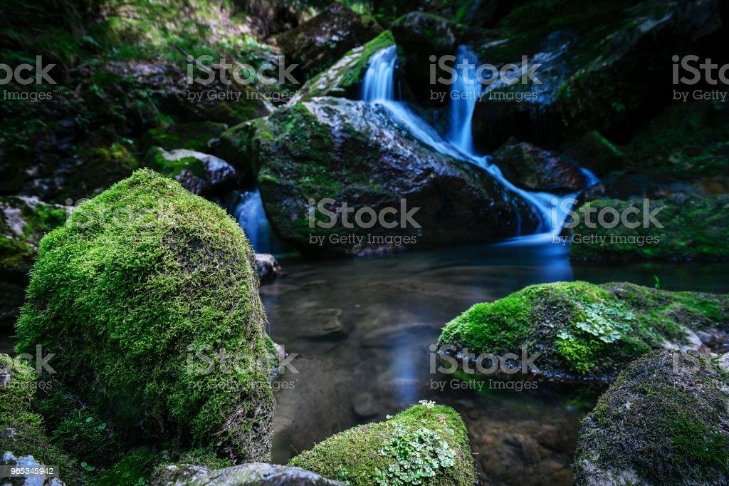 River in Austria zbiór zdjęć royalty-free
