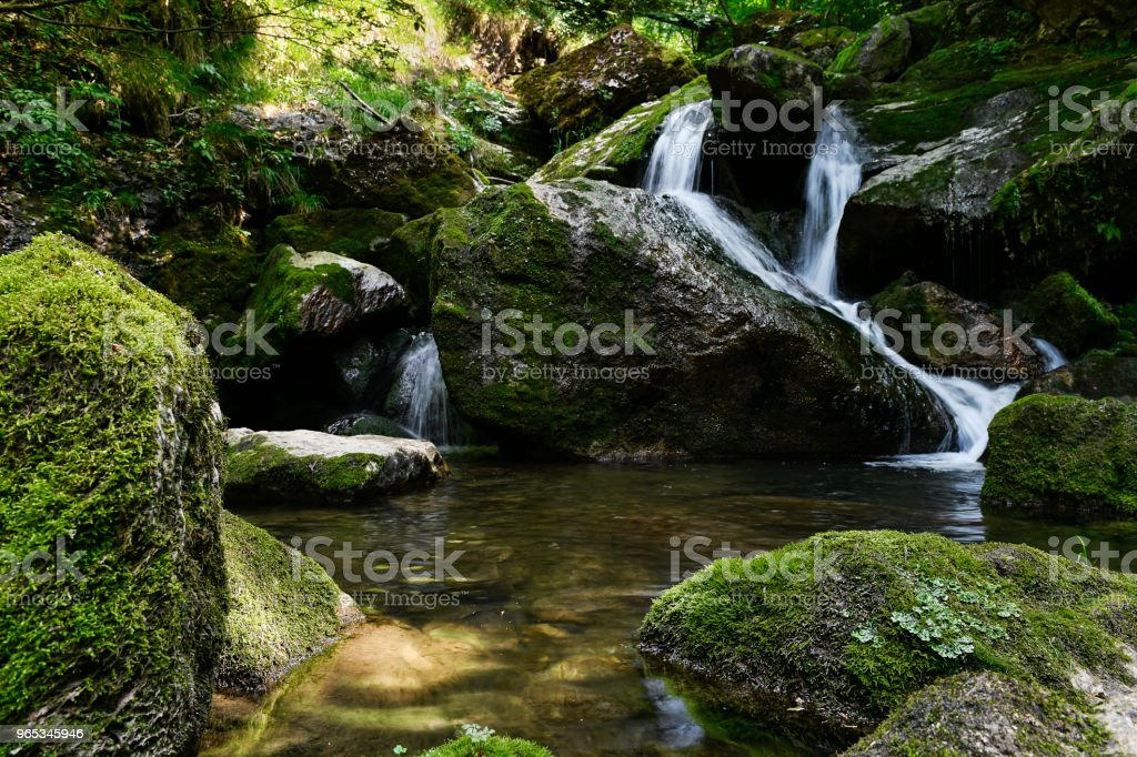 River in Austria royalty-free stock photo