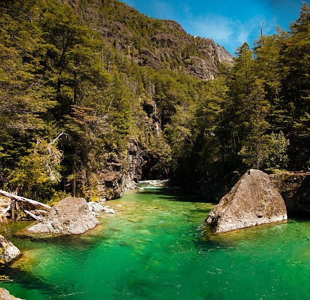 Río en el bolson argentina patagonia 2 - foto de stock
