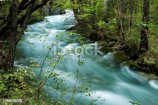 istock river in forest in Jiuzhaigou 1299019709