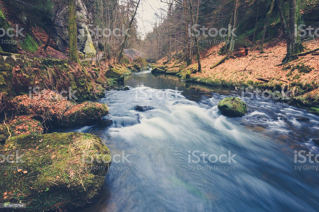 river in forest landscape during autumn, vintage filtered stock photo