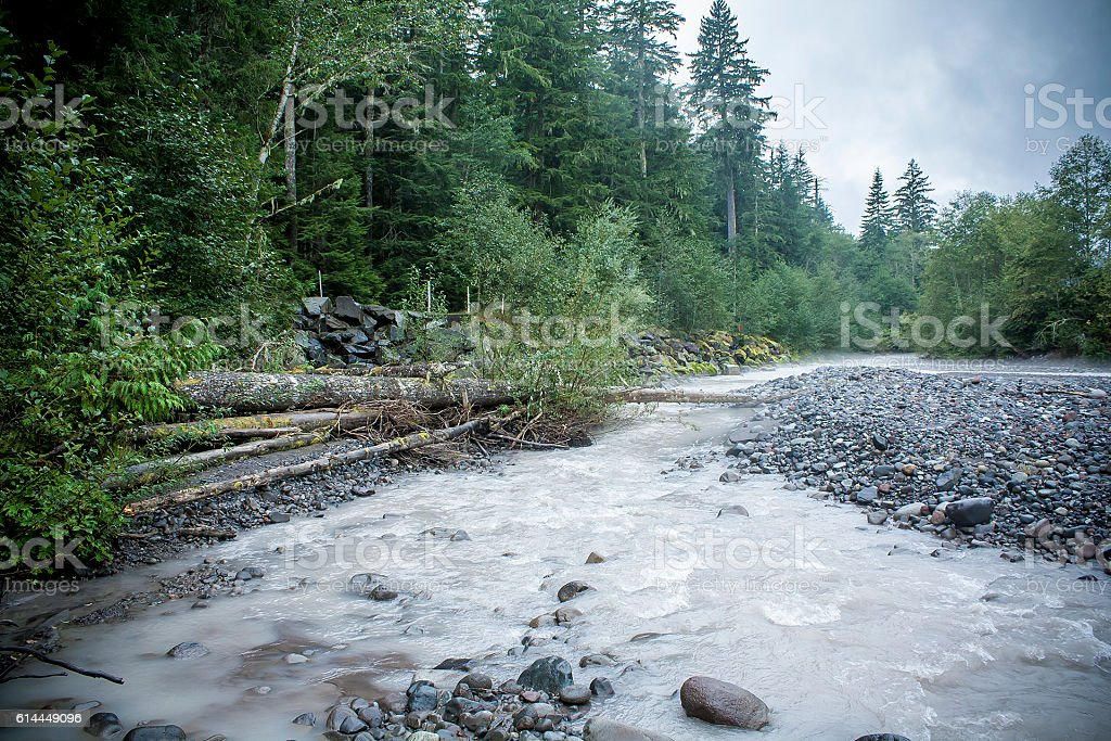 River in Mount Rainier National Park Washington State stock photo