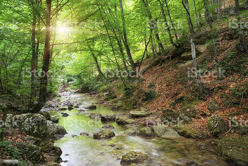 River in mountain royalty-free stock photo