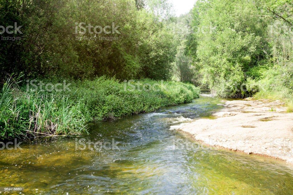 Rivier in natuurpark - Royalty-free Berg Stockfoto