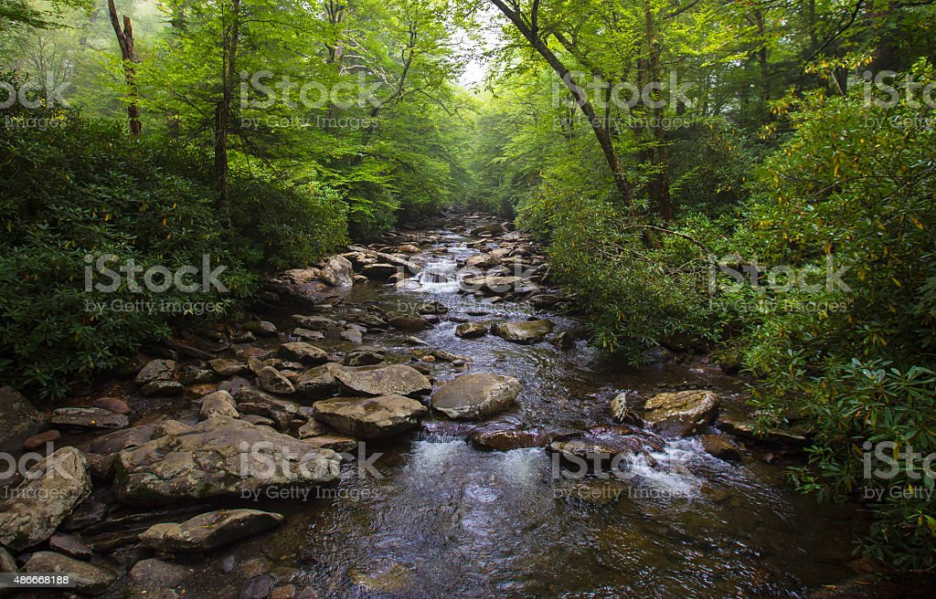 River in North Carolina stock photo