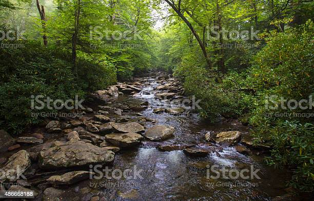 Photo of River in North Carolina
