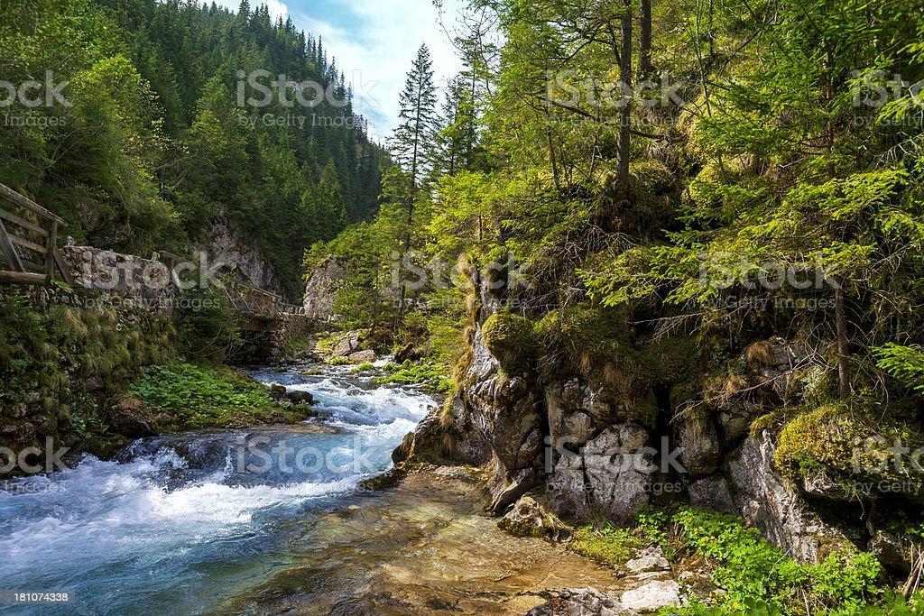 Mountain river – Foto