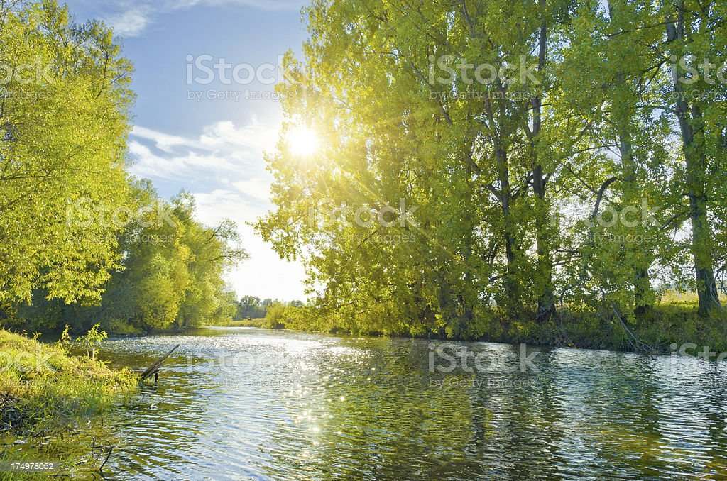 River in sunlight stock photo