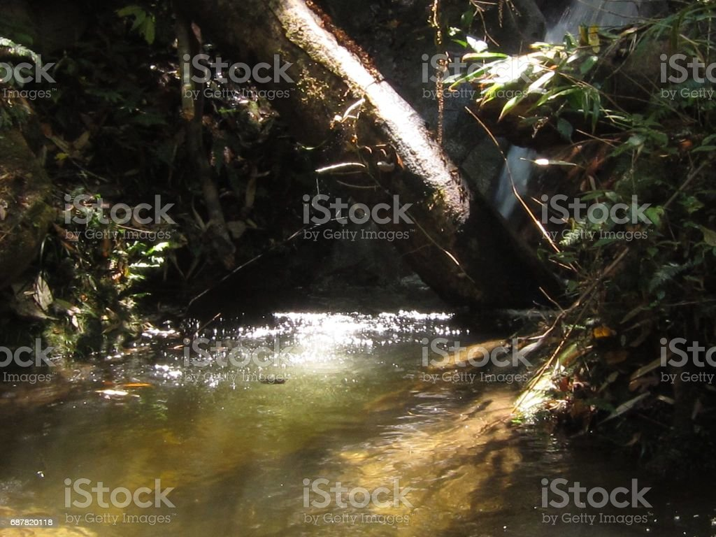 River in Thailand stock photo