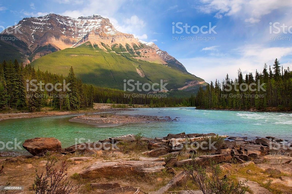 River in the Canadian Rockies royalty-free stock photo