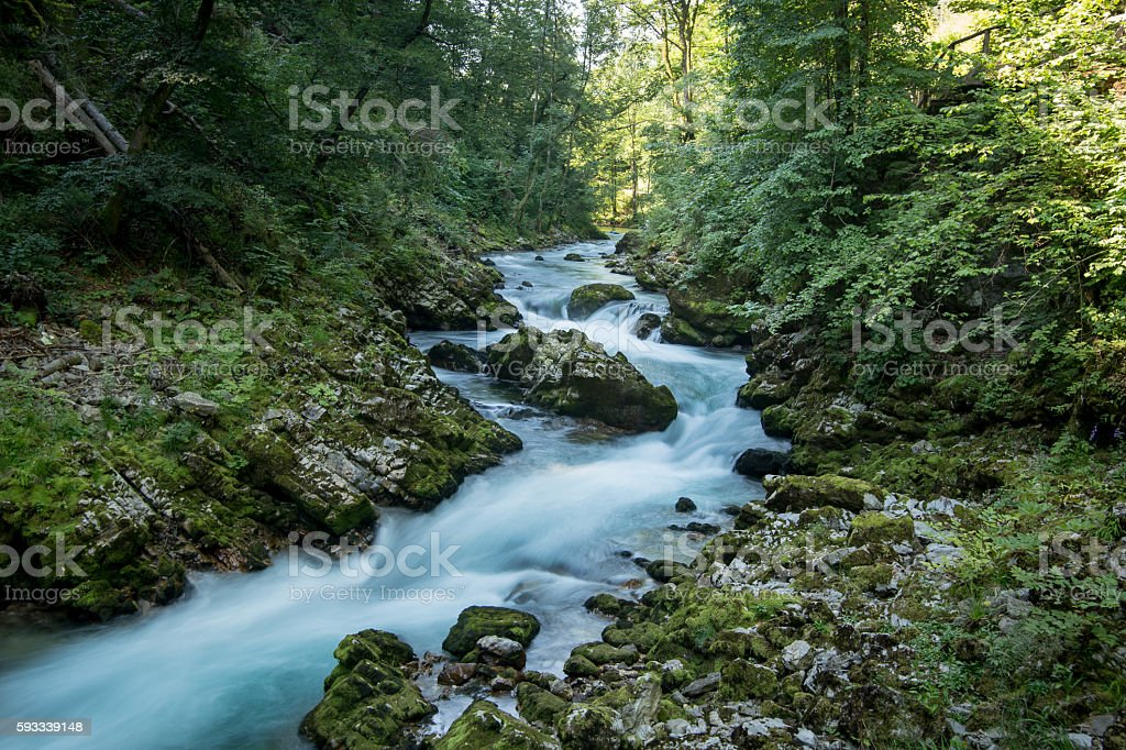 River in the canyon royalty-free stock photo