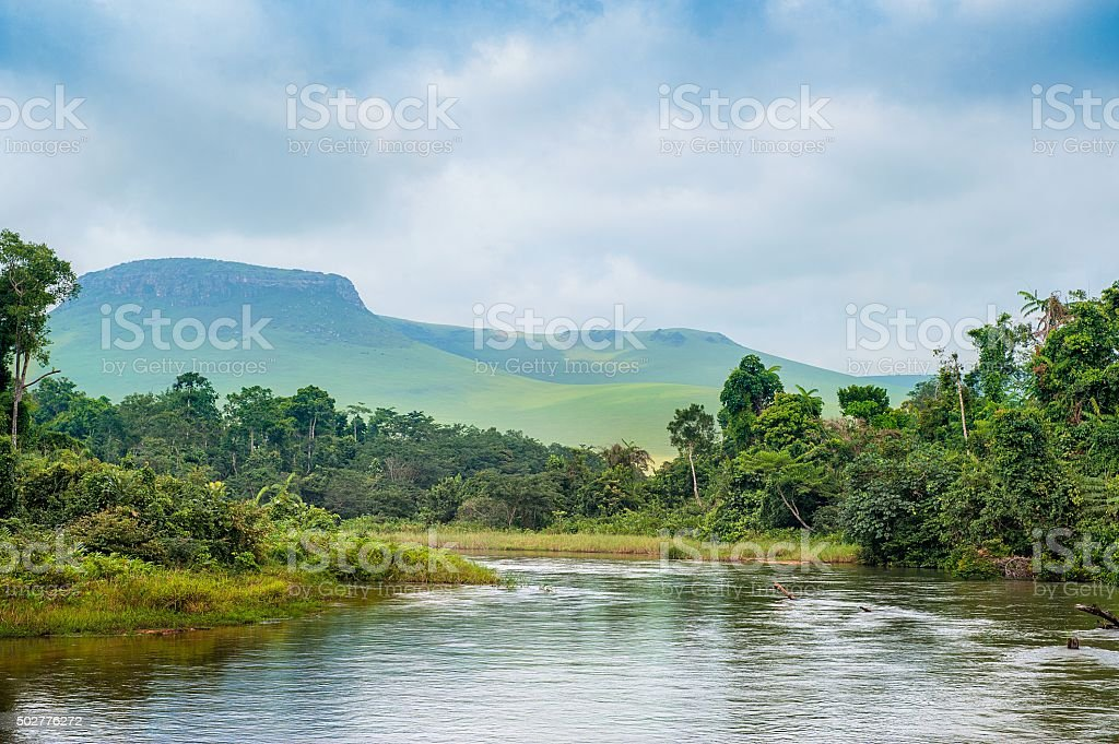 River in the Jungle. stock photo