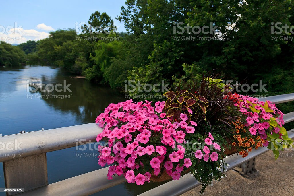 River in the Mountains stock photo