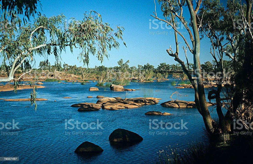 River in western australia 免版稅 stock photo
