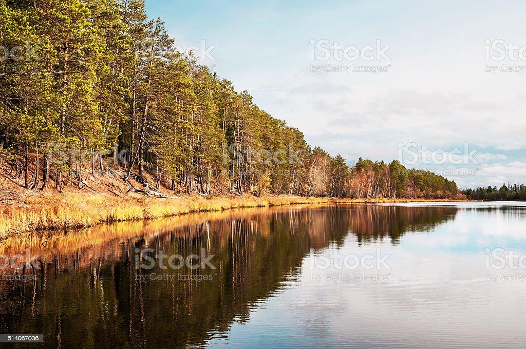 River in western Siberia. stock photo