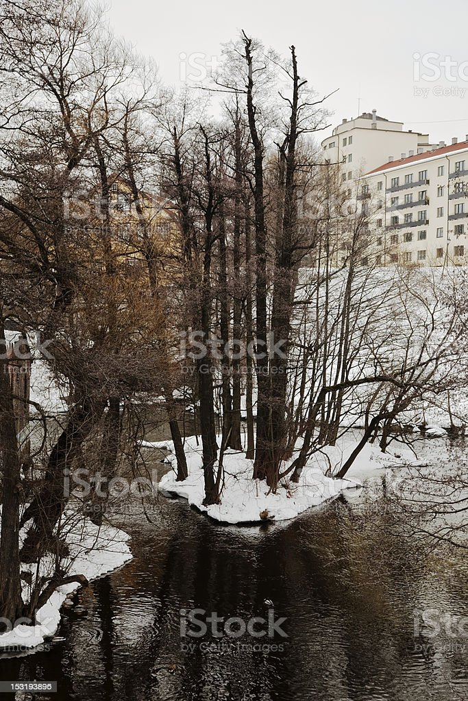River in winter. royalty-free stock photo