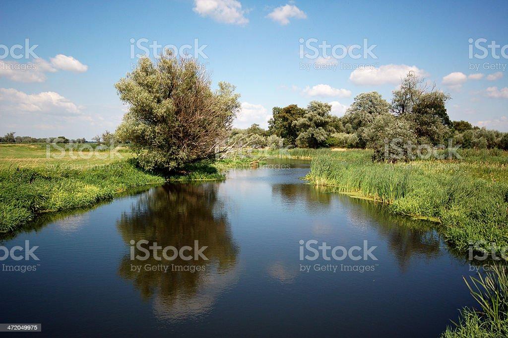 river landscape on Havel (Brandenburg) stock photo