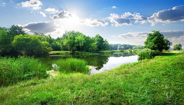 река пейзаж - пруд стоковые фото и изображения
