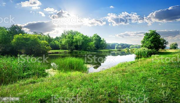 Photo of River landscape