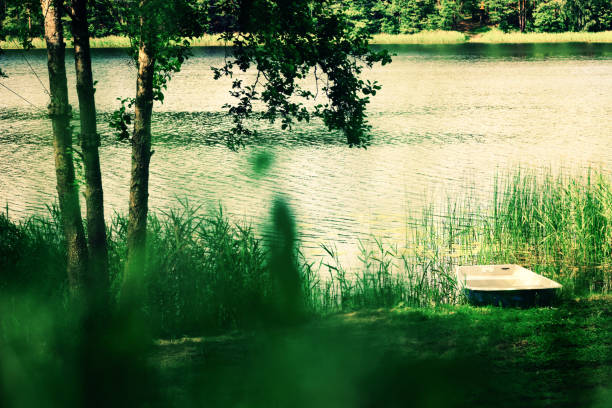 River landscape, tree, boat. Pure nature background. Summer concept stock photo