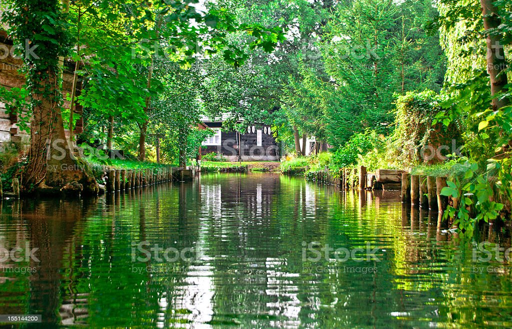river landscape with green forest in Spreewald/ Germany stock photo