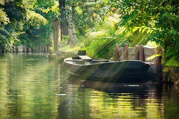 강 풍경, 녹색 숲 spreewald/독일 - 브란덴부르크 주 뉴스 사진 이미지