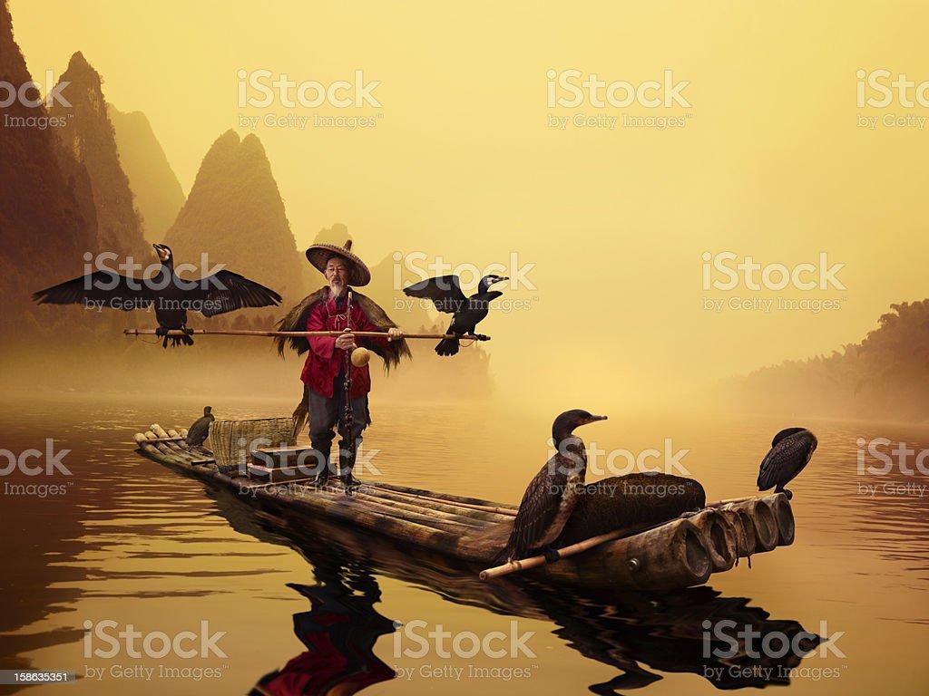 River Lee Cormorant Fisherman royalty-free stock photo