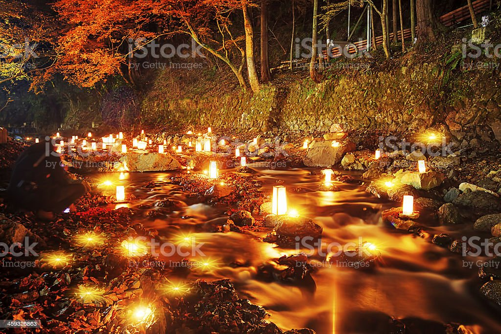 River light and nice maple stock photo