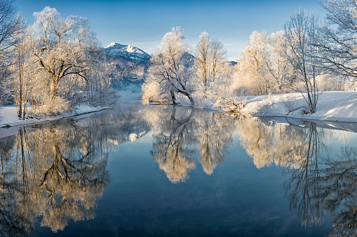 River Loisach flows into the Kochelsee, winter with rime and snow on the trees