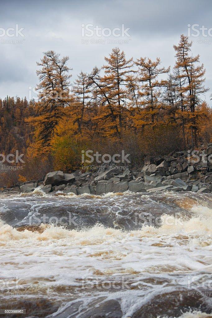 River  Moiero and Siberian taiga in the autumn stock photo