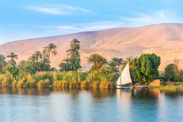 River Nile in Egypt. stock photo