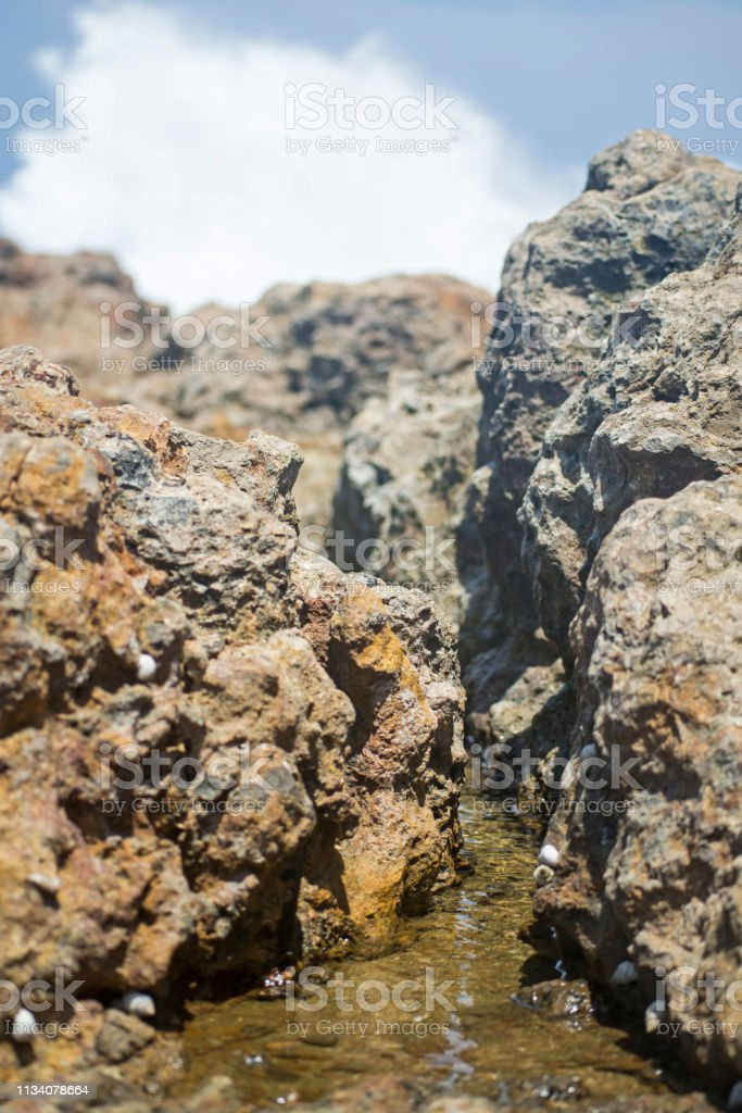 A river of salt water among coral stones stock photo