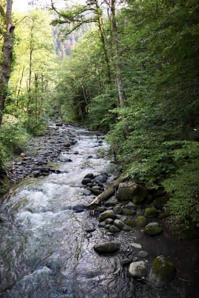 River outside Borjomi Georgia stock photo