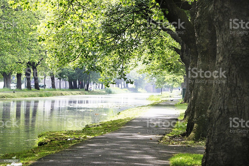 River Path stock photo