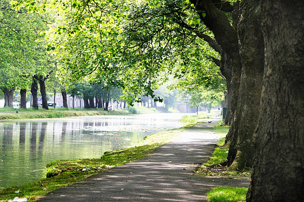 River Path stock photo