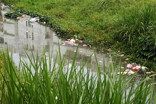 river pollution stock photo