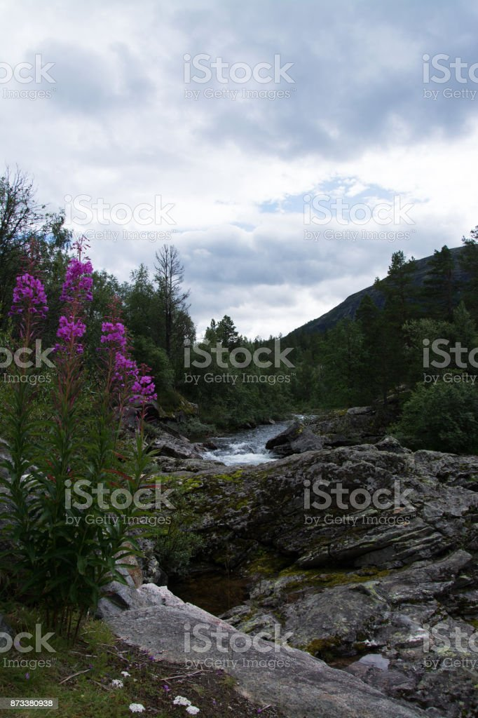 River Rauma, Oppland, Norway stock photo