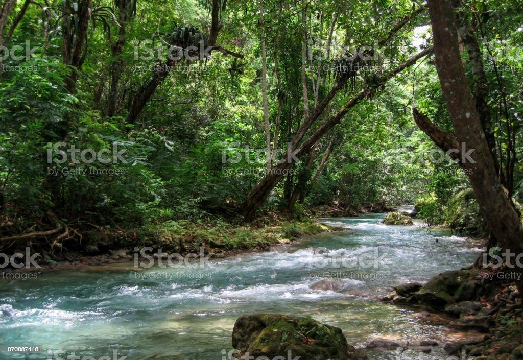 River Runs Through Jungle in Caribbean stock photo