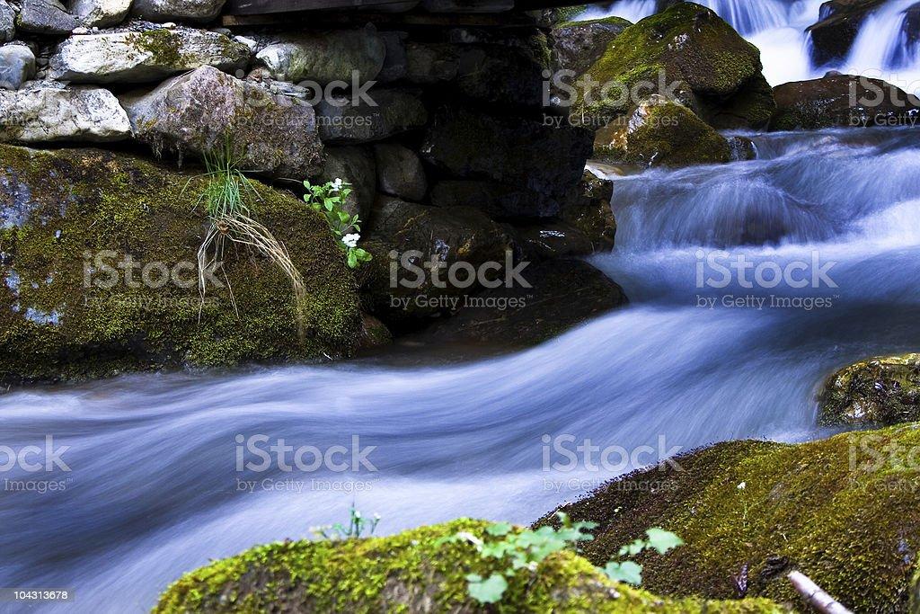 River scenic royalty-free stock photo