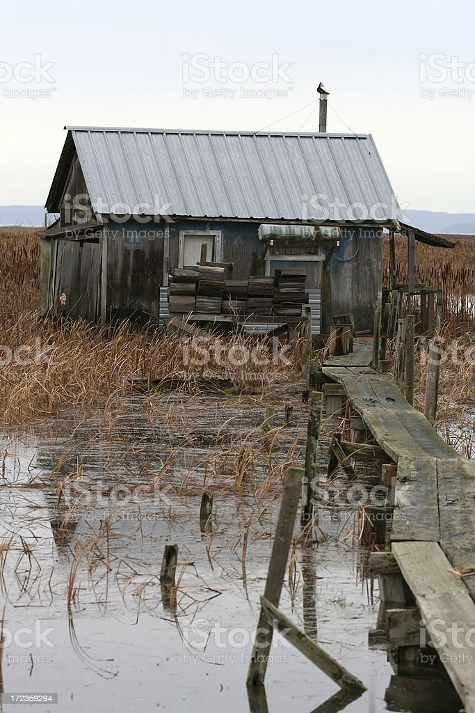 River Shack royalty-free stock photo