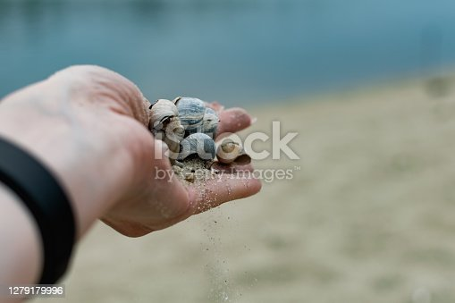 River shells and fine white river sand fall from a woman's hand in nature