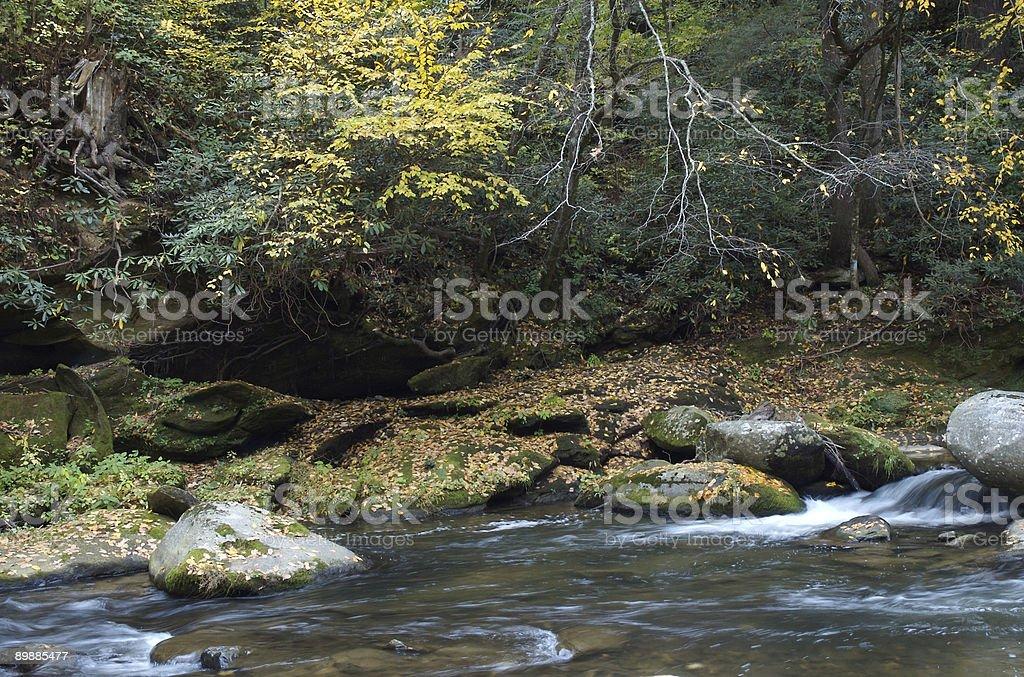 Lado del río en otoño foto de stock libre de derechos