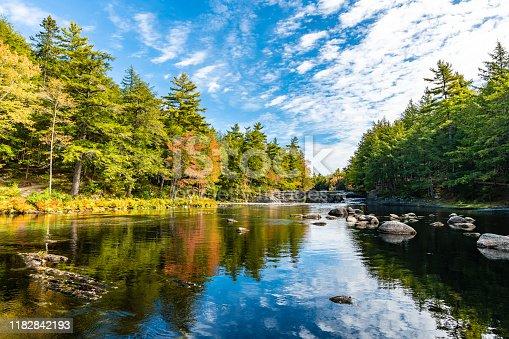 River side woodland in Kejimkujik National Park, Canada