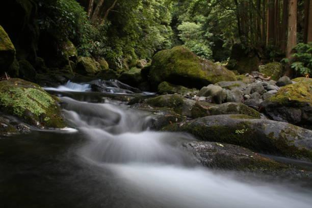 River Smoke - fotografia de stock