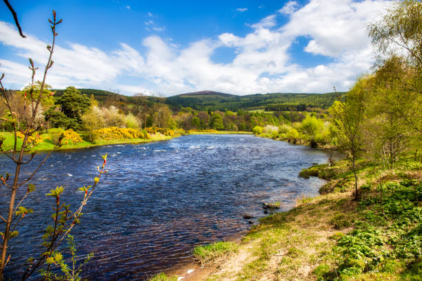 River Spey near Rothes The River Spey near the village Rothes north coast 500 stock pictures, royalty-free photos & images