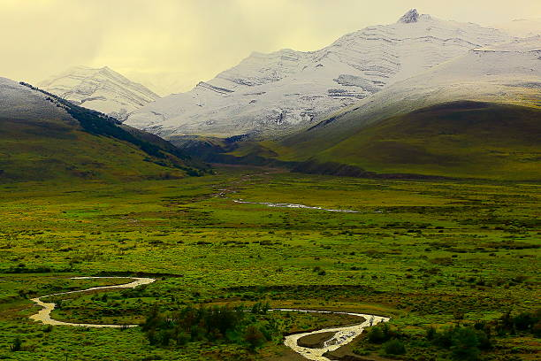 River stream into Snowcapped Patagonia Andes, steppe landscape, Chalten, Argentina River stream into Snowcapped Patagonia Andes, steppe landscape, Chalten, Argentina steppe stock pictures, royalty-free photos & images